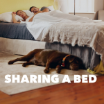 Sleep Talk: Episode 45 – Sharing a Bed